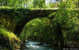 Puentes de Malpaso - Molinaseca