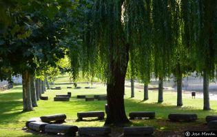 Parque Navaluenga