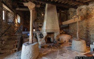 Museo del Aceite - San Felices de los Gallegos
