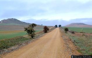 Vía Verde de Carbajosa de la Sagrada a Alba de Tormes