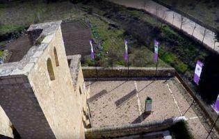 Qué visitar en Pedraza - Centro Temático del Águila Imperial