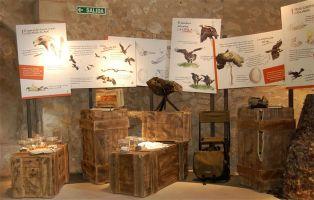 Qué visitar en Pedraza - Un Paseo por Pedraza
