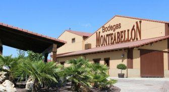 Visita Bodegas Monteabellón - Nava de Roa