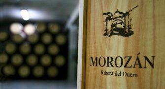 Visita Bodega Morozán - Gumiel de Izán