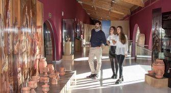 Visita Bodega Museo del Vino Emina
