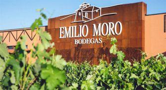 Visita Bodegas Emilio Moro - Pequera de Duero