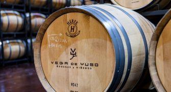 Visita Bodegas Vega de Yuso - Ribera del Duero