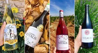 Visita Bodegas Vitalis - Villamañán