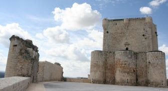 Visita guiada Castillo de Íscar