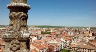 Visita Guiada Torre y Colegiata de Medina del Campo
