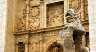 visita guiada Medina de Rioseco