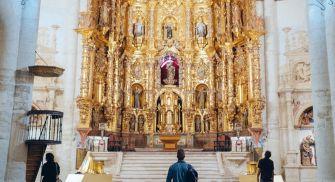 Visita Monumental y Paseo en Barco Medina de Rioseco