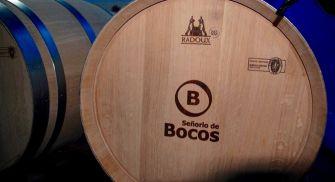 Visita Bodegas Señorío de Bocos