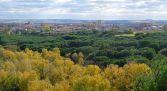 Ruta Ornitológica en la Ciudad de Zamora