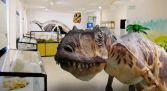 Visita Museo de los Dinosaurios - Salas de los Infantes