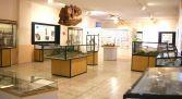 Museo Arqueológico y Paleontológico Salas de los Infantes