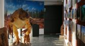 Museo de dinosaurios Burgos