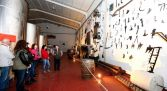 Visita bodegas en Peñafiel - Peñafalcón