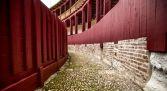 Visita guiada Toro Monumental - Zamora