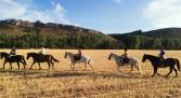 Rutas y Paseos a caballo en la Montaña Palentina
