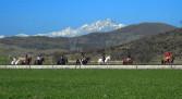 Paseos a caballo en la Montaña Palentina