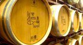 Visita Bodega Vinos La Zorra - Mogarraz