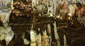 Cuevas del Águila visita