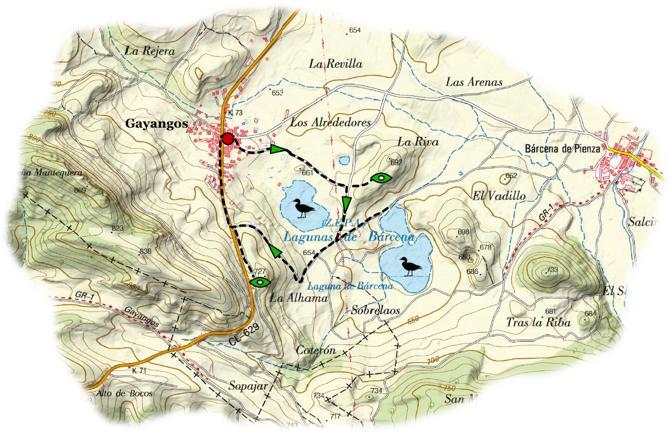 Ornit Lagunas Gayangos map